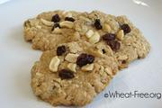 Wheat free Oat Crunchies Cookie recipe